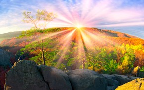 Обои красота, лучи, горы, Украина, деревья, Закарпатье, высота, лес, солнце, небо, скалы, осень, камни