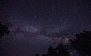Обои ночь, звезды, млечный путь