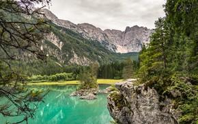 Картинка зелень, лес, горы, озеро
