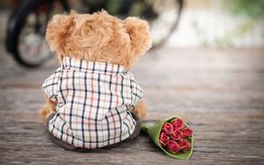 Картинка любовь, цветы, игрушка, розы, букет, медведь, love, bear, romantic, teddy, roses, cute, lonely
