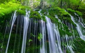 Картинка вода, природа, камни, растительность, водопад, мох