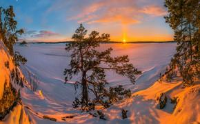 Картинка зима, снег, деревья, закат, озеро, сугробы, Россия, сосна, Ладожское озеро, Карелия, Ладога