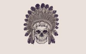 Картинка череп, перья, скелет, skull, индеец, indian