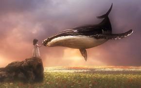 Обои прикосновение, поле, кит, небо, девочка