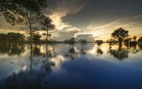 Картинка облака, деревья, озеро, отражение
