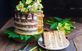 Картинка цветы, торт, слои