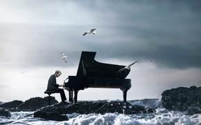 Картинка волны, чайки, пианино, пианист, Vincent Bourilhon, The Ocean Symphony
