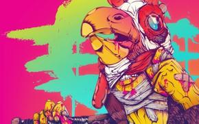 Картинка Игра, Кровь, Кисть, Фон, Петух, Miami, Richard, Персонаж, Hotline Miami, Ричард, Synthpop, Darkwave, Synth, Retrowave, …