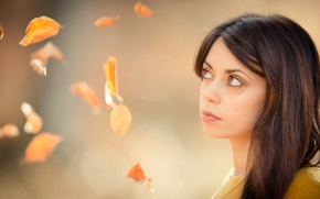 Картинка взгляд, листья, девушка