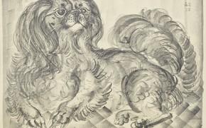 Картинка собачка, гравюра, Цугухару, Фудзита, литография, Маленький пикинес