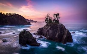 Обои небо, деревья, океан, скалы