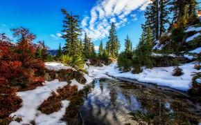 Картинка снег, деревья, озеро, штат Вашингтон, Washington State, Alpine Lakes Wilderness, Озеро Сноу, Snow Lake, Snoqualmie ...