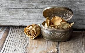 Картинка фон, коробка, роза