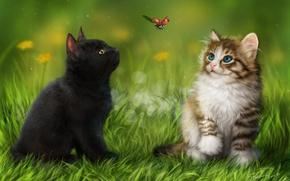 Обои трава, котята, божья коровка, животные