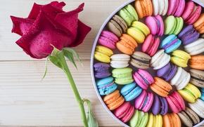 Картинка цветок, коробка, роза, box, color, dessert, candy, macaron, flover