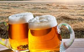 Картинка поле, пена, солнце, деревья, пейзаж, рассвет, пиво, солома, кружки, боке