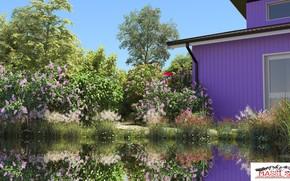 Картинка лето, растительность, строение, водоём, property