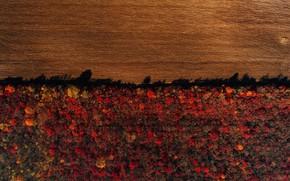 Картинка поле, осень, лес, Молдова
