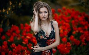 Картинка взгляд, девушка, фото, платье, Дарья, Hakan Erenler
