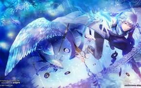 Картинка ангел, парень, Vocaloid, Вокалоид, Кайто
