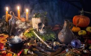 Обои Хеллоуин, натюрморт, Halloween, пузырьки, мох, тыквы, кувшин, колдовство, котелок, череп, мак, листья, книга, кукла, магия, ...