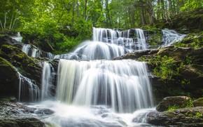 Картинка зелень, вода, камни, водопад, каскад