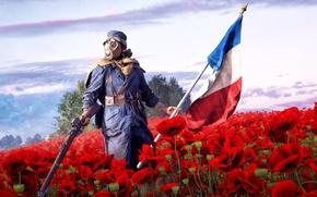 Обои в руках, мак, солдат, поле, французский, Electronic Arts, знамя, пехотинец, Battlefield 1, винтовка, игра