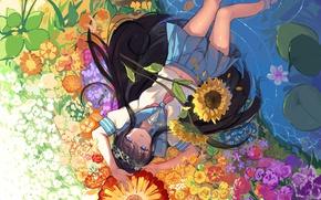 Картинка вода, девушка, подсолнухи, цветы, аниме, арт, форма, школьница, haraguroi you