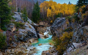 Картинка осень, деревья, река, камни, скалы, Колорадо, Colorado, Скалистые горы, Rocky Mountains, Independence Pass, Индепенденс Пасс