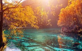 Картинка осень, лес, солнце, деревья, горы, озеро, желтые, Китай, заповедник, Jiuzhaigou, Цзючжайгоу