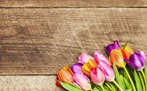 Картинка цветы, букет, colorful, тюльпаны, love, wood, romantic, tulips, gift