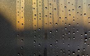Обои влага, стекло, макро, роса