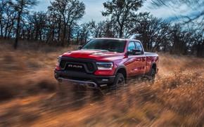 Обои Dodge, пикап, 1500, Ram, 2019, Rebel Quad Cab
