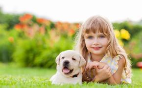 Картинка лицо, улыбка, девочка, щенок, друзья, puppy, face, ретривер, dogs, glance, little girls