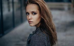 Картинка взгляд, девушка, фон, портрет, макияж, прическа, шатенка, боке, Ivan Proskurin, Fenix