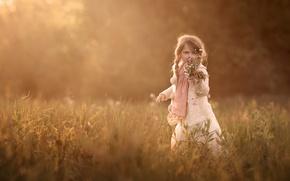 Картинка поле, букет, девочка, косичка