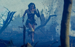 Обои cinema, battlefield, Wonder Woman, armor, dress, weapon, woman, war, movie, hero, film, shield, uniform, yuusha, ...