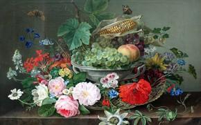 Картинка бабочки, цветы, фрукты, натюрморт, Gottfried Wilhelm Völcker