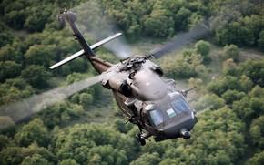 Картинка полет, вертолет, лопасти