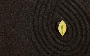 Картинка песок, камень, текстура, листик