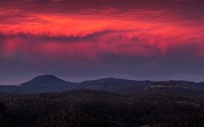 Картинка forest, twilight, sunset, hills, dusk