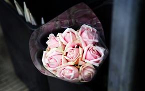 Картинка цветы, розовый, розы, букет
