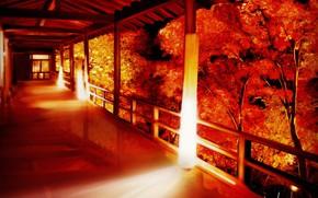 Картинка осень, дом, крыльцо