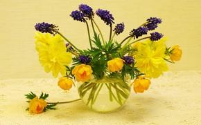 Картинка цветы, природа, настроение, праздник, красота, растения, весна, май, натюрморт, синий цвет, букетик, нарциссы, мускари, флора, …