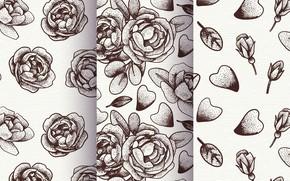 Картинка фон, розы, текстура, лепестки, patterns, flowers, roses