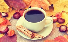 Картинка осень, листья, кофе, чашка, желуди, autumn, leaves, book, fall, cup of coffee