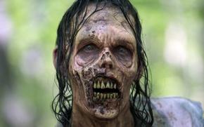 Картинка teeth, The walking dead, zombie