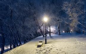 Обои зима, вечер, фонарь, парк, деревья
