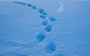 Картинка снег, следы, путь, голубой, след, календарь, февраль, 2017