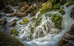 Картинка зелень, камни, Франция, водопад, мох, Provence